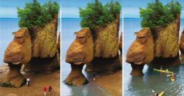 Vịnh Fundy – Sự kỳ diệu có một không hai của tự nhiên đất nước Canada